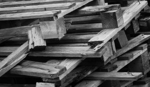11 Kinds of Wood that Should Not be Burned in a Fireplace + BONUS