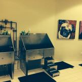 Dog Grooming Room at The Austonian