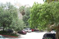 Privacy Trees around Chateau Bellevue / The Austin Woman's Club Exterior - a true gem of downtwon Austin