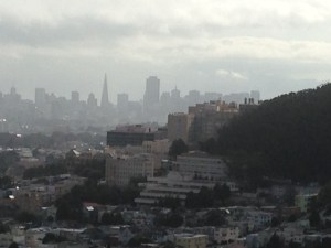 June morning looking towards Downtown SF from atop a hill in the Inner Sunset