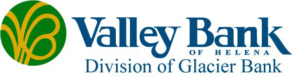 VB logo_horz_division_color