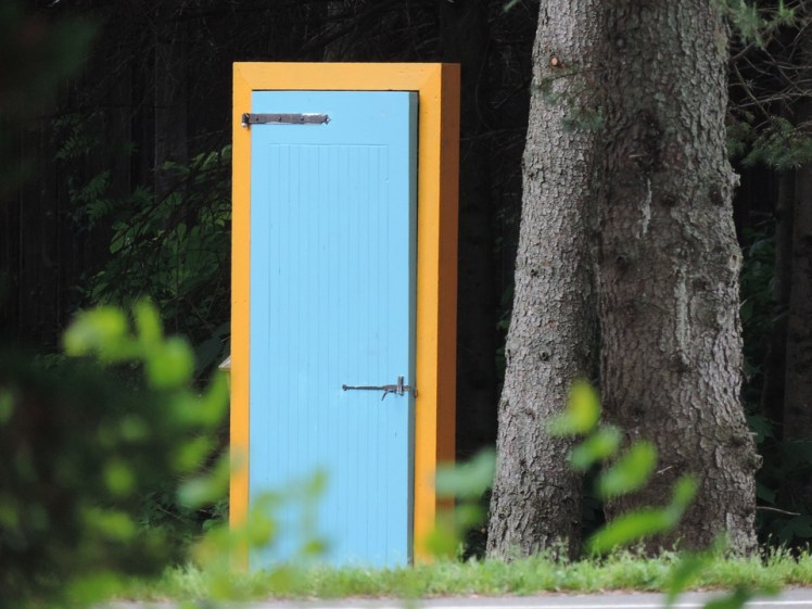 A surreal picture of a door in a forest.
