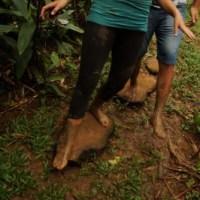 Barfuß durch den Dschungel – Karibik-Abenteuer abseits des Party-Mainstreams