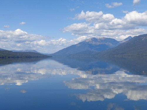 """""""B(e)ar View"""" at Clearwater Lake – Find new Friends Outdoors"""