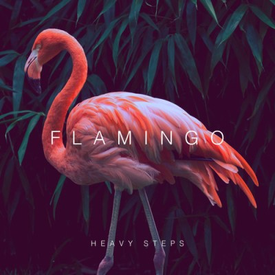 DYLTS Flamingo - Heavy Steps EP