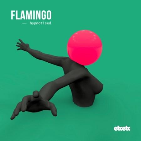 DYLTS - Flamingo - Hypnotised