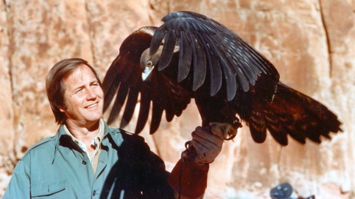 jim fowler bird