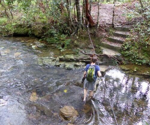 Trekking Bach Ma National Park - Vietnam