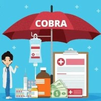 COBRA insurance need to knows