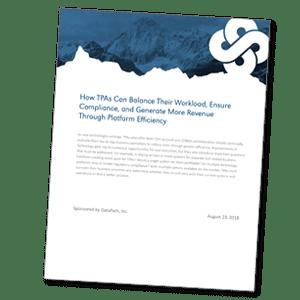 White Paper Platform Efficiency