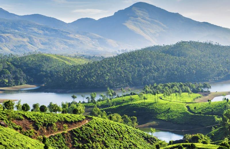 monsoon vacation in Munnar Kerala