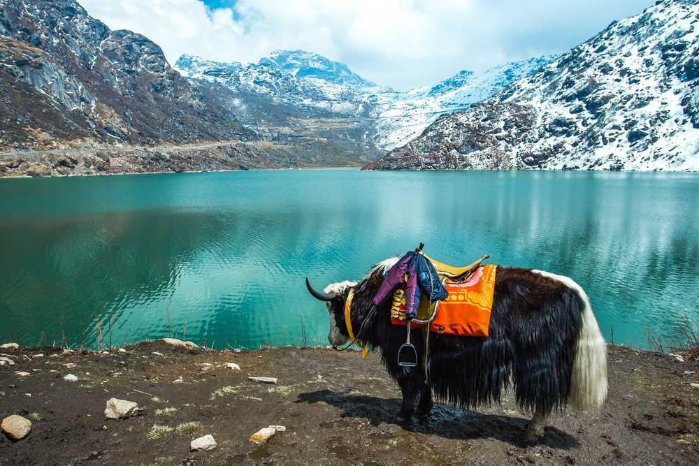 Tsomgo-lake. Gangtok, Darjeeling