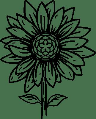 ELEMENTAL HEALING
