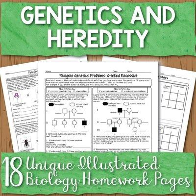 Genetics Homework Pages