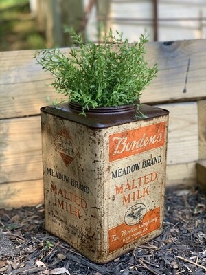 Vintage Planter, Vintage Advertising, Milk Can