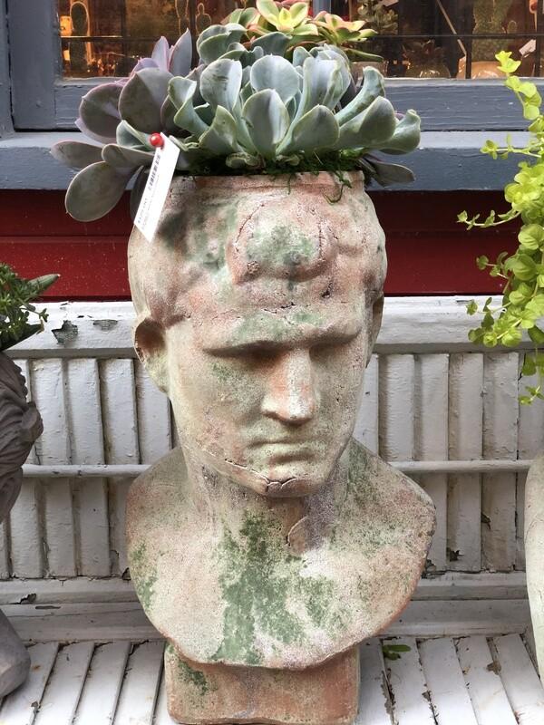 Large Caesar Succulent Planter