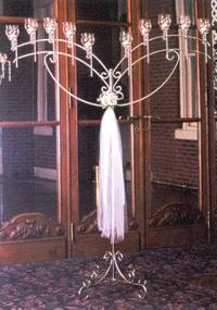 10L Angel Wings- Silver Shiny