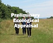 Preliminary Ecological Appraisal and Report Writing - PEA (Nr Exeter): 13th and 14th October 2020