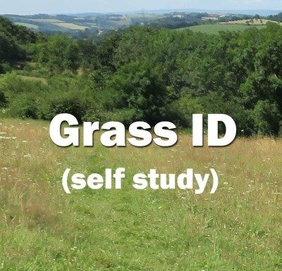 Grass Identification **NEW** Self-study course