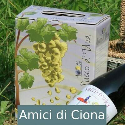 Succo d'Uva in box (3l)
