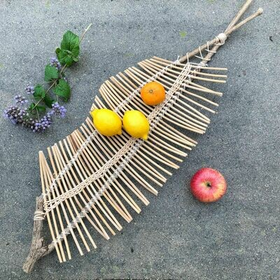 Nature Tray: Saturday, May 2, 2020. 2:30-6:30 PM.
