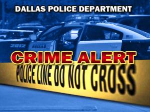 crime-alert1