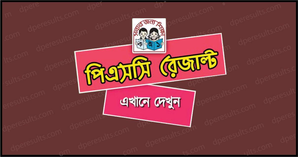 PSC Result 2019 online dperesult teletalk com bd - DPE