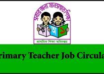 Primary Teacher Job Circular