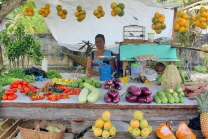 Nalini Sukhal, a vendor who works along the Timehri Highway