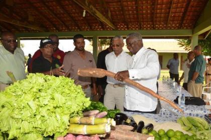 President David Granger and Barbados Prime Minister Freundel Stuart admiring this organically grown bitter cassava as Farm Manager, Mr. Persaram Ramdat looks on.