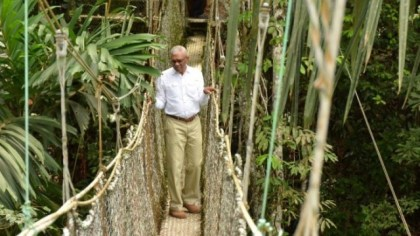 President David Granger became the first sitting Head of State to cross the Canopy Walkway at Iwokrama