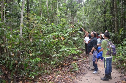 Prime Minister Moses Nagamootoo, and his family, looking at several birds along a trail at the Iwokrama International Centre for Rainforest Conservation and Development