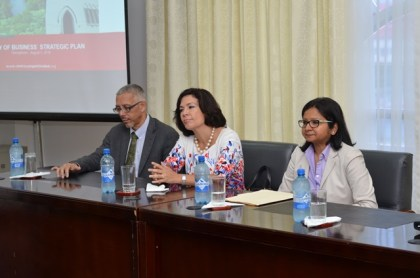 Facilitators of the consultation. Seated at the head table from left to right; Minister of Business Dominic Gaskin, Consultant Nathalie Cely and Deputy Resident Representative UNDP Shabnam Mallick