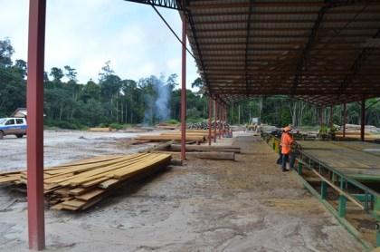 The Iwokrama Sawmill