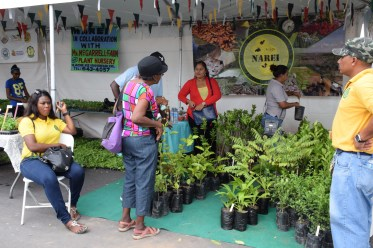 National Agricultural Research and Extension Institute's (NAREI) booth at the Farmers' Market
