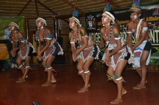 A cultural dance by an Indigenous group
