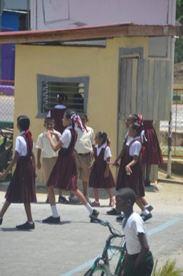 Security Hut donated to Rose Hall Primary School by the Rose Hall Town Anniversary and Development Organisation (RHTADO).