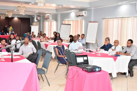 Representatives of ten government agencies attended workshop.