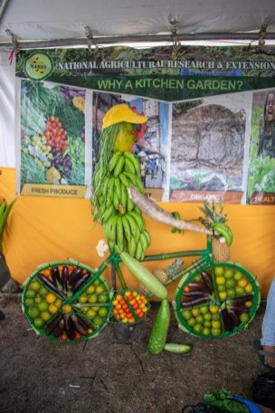 A creative display of locally produced crops.