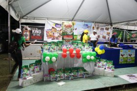 Some of the exhibitors at the Essequibo Night Expo