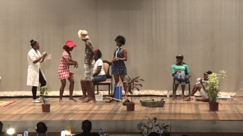 Scenes during Pesticide and Toxic Chemicals Control Board's (PTCCB) pesticide awareness in secondary school drama competition.