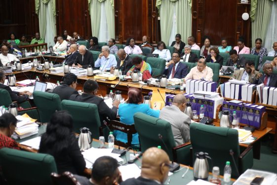 Members of Parliament during a Sitting of the National Assembly.