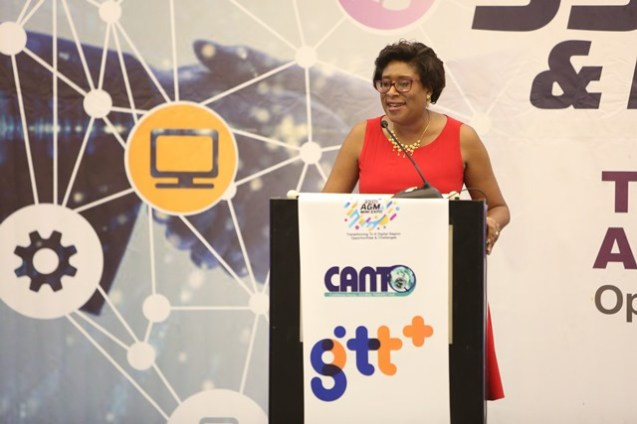 Minister of Public Telecommunications, Catherine Hughes addressing the audience.
