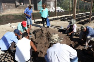 The farmers of Santa Rosa preparing the soil to plant the coffee in the presence of Minister within the Ministry of Indigenous Peoples' Affairs, Valerie Garrido-Lowe