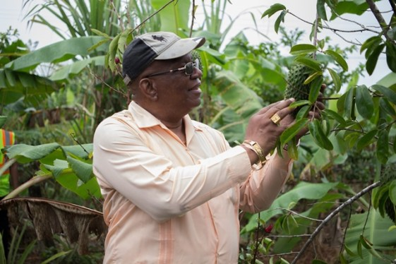 Minister of Finance, Winston Jordan examines a soursop at a Mocha farm.