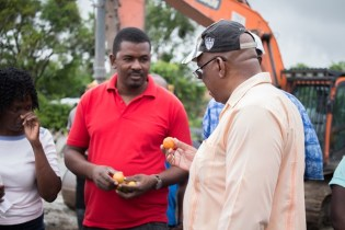 Minister of Finance, Winston Jordan examines a tomato at a Mocha farm.