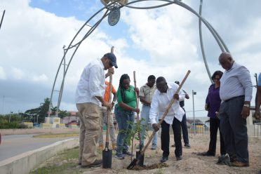 Minister of Natural Resources, Raphael Trotman and the South Africa's Deputy Minister of Mineral Resources, Godfrey Oliphant plant a tree by the Casuarina Drive arch in Linden as a symbol of friendship between the two countries
