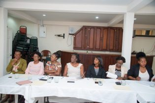 Section of the member of the council that are meeting to look at Nursing Regulations