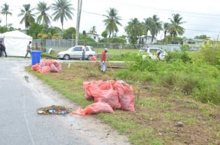 Agricola residents working in the community campaign