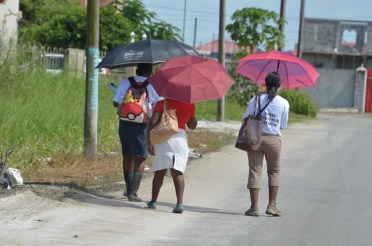 """National House-to-House Registration in """"Block I' Eccles, East Bank Demerara"""